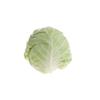 """כרוב לבן 0.8-1 ק""""ג"""