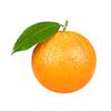 תפוז שמוטי גודל 40