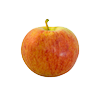 תפוח גלה קוטר 7.5