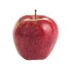 תפוח סטרקינג דל קוטר 6.5